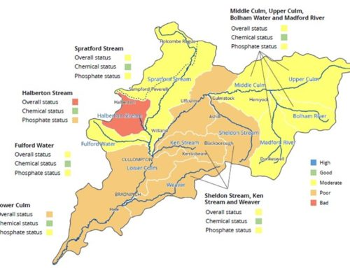 The Water Framework Directive – results for the Culm