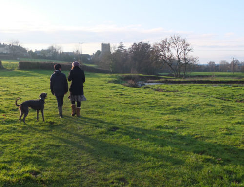 Tell us about YOUR River Culm