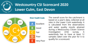 Culm CSI Lower Culm Scorecard