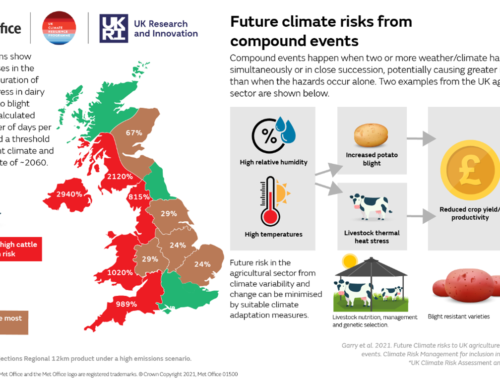 Cows, potatoes and climate change