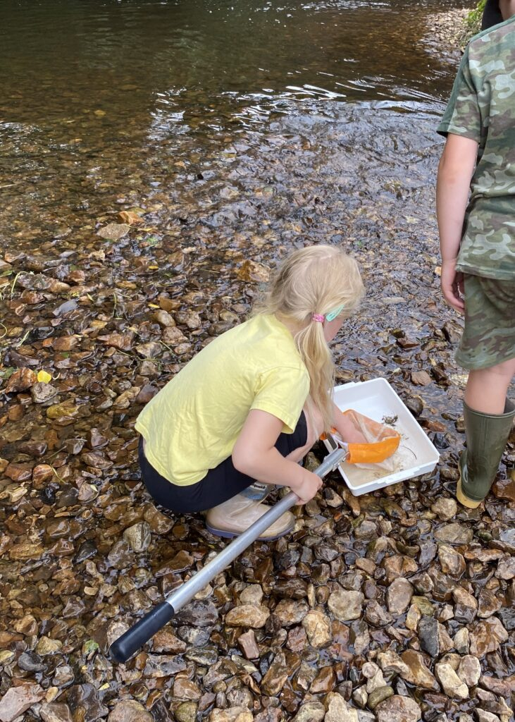 Child river dipping in the river Culm