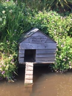 Duck house on the Culm next to the main road in Cullompton